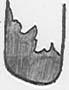 drawing natural edge toe cap