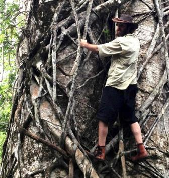 tree climbing moccasins