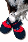 goop dog booties polar paws