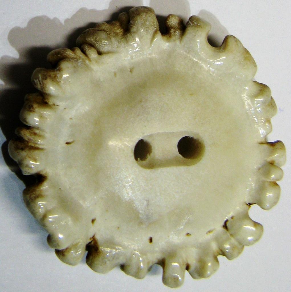 natural antler crown button